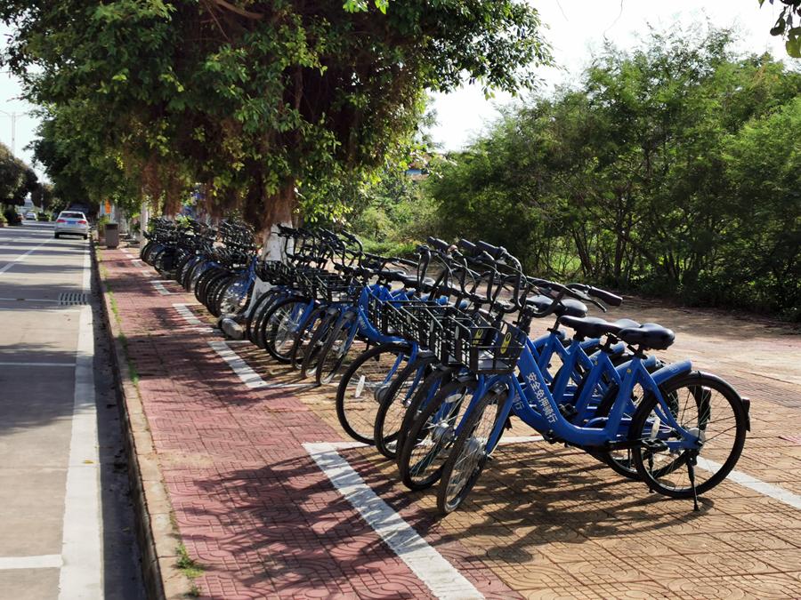合浦还珠南路投放小蓝共享单车,5角钱能骑半小时......