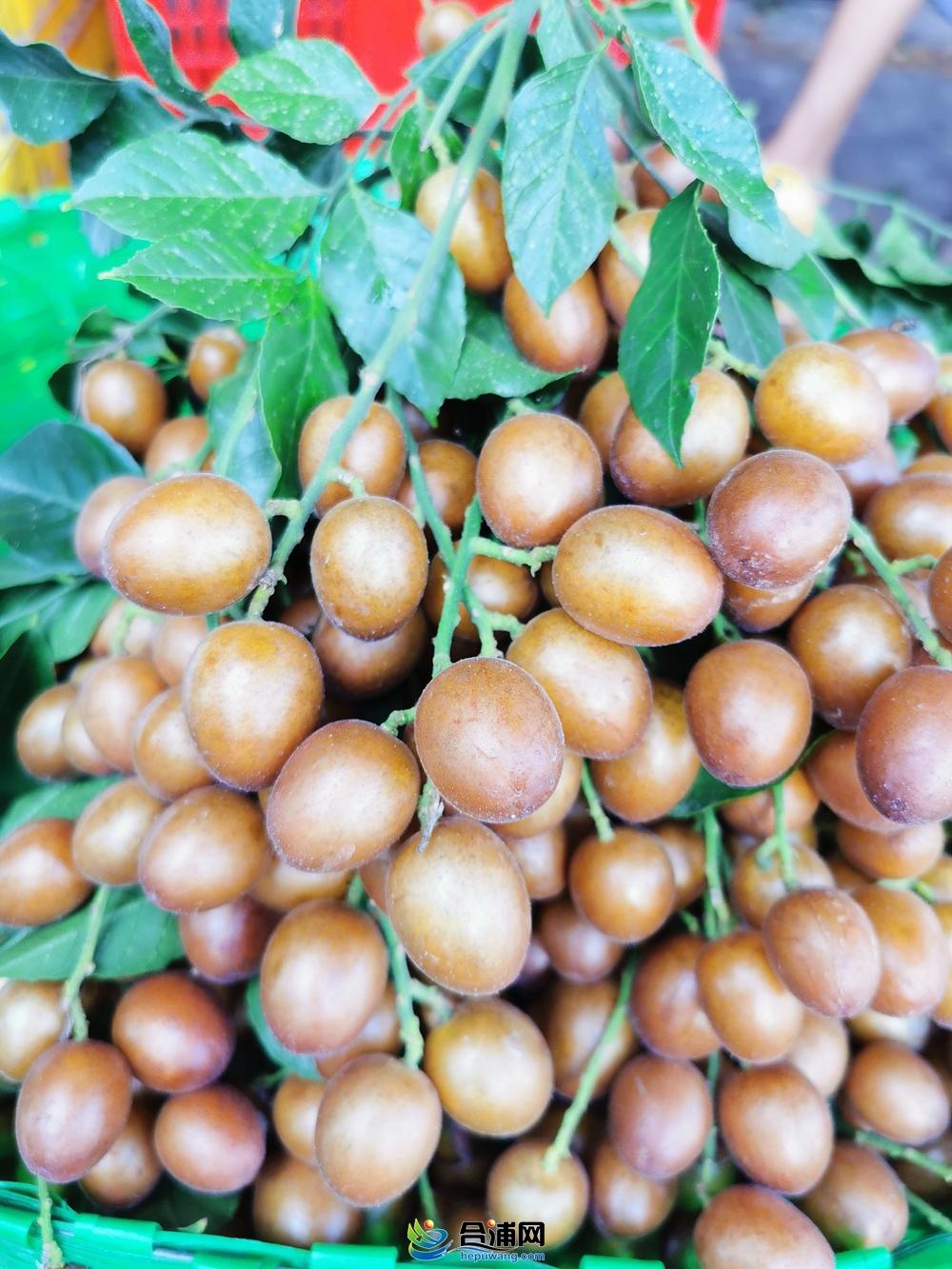 酸酸甜甜,夏日才有的时令水果,合浦廉东市场批发价3.5元/斤...